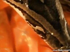 लिसा थैचर सेक्सी फुल मूवी हिंदी वीडियो वाइल्ड प्ले थिंग्स