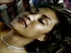 लड़की बड़े स्तन और बिल्ली के साथ खेलने के लिए कवर के नीचे छिपती हिंदी फुल सेक्सी मूवी है